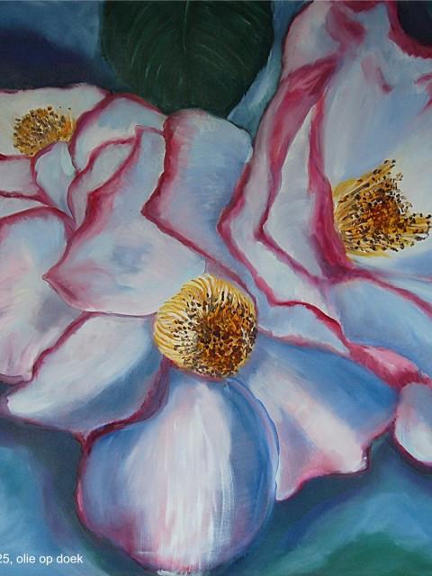 bloemen 012
