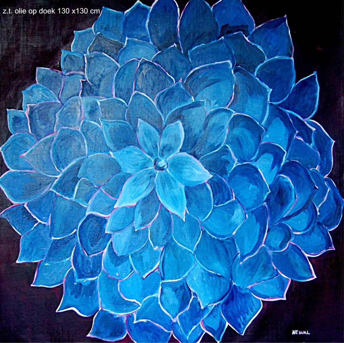 bloemen 014